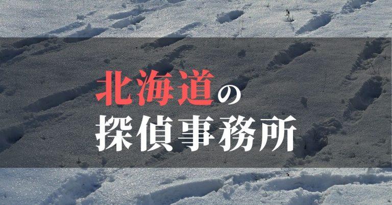※【これは仮】北海道で浮気調査を依頼するならここ!おすすめ探偵事務所の費用・相場と申込の流れは?!