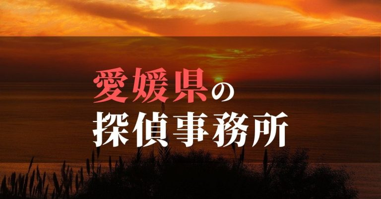 愛媛県で浮気調査を依頼するならここ!おすすめ探偵事務所の費用・相場と申込の流れは?!