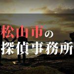松山市でおすすめの浮気・不倫調査の探偵事務所